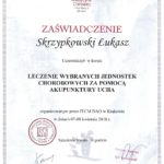 Dyplom ukończenia kursu z Akupunktury Ucha.