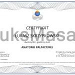 Certyfikat ukończenia kursu Anatomii Palpacyjnej.