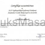 Certyfikat wygłoszenia odczytu na konferencji naukowej PUM.